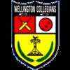 Wellington Collegians, Wellington Collegians, Fireraiders XI