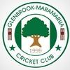 Glenbrook-Maramarua Senior B
