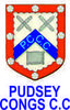 Pudsey Congs, 1st XI