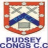 Pudsey Congs, 2nd XI