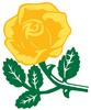 Parnell Cricket Club, 2A Hawks