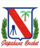 Papakura Cricket Club, Year 5/6 Thunder