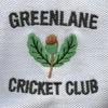 Greenlane Cricket Club., 2A Lions