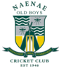 Naenae Old Boys Cricket Club., Desi Boys