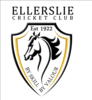 Ellerslie Cricket Club, Premier Men