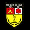 Wellington Collegians, Cricket Express Premier Reserve Men