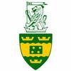 Victoria University of Wellington Cricket Club, Stallions