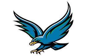 Image result for UHCL hawk